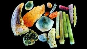 sand-grains-under-microscope-gary-greenberg-61